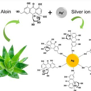 Research paper on green synthesis of nanoparticles