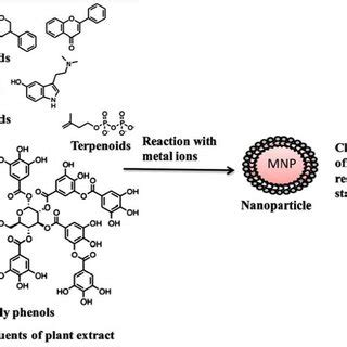 research paper on green synthesis of silver nanoparticles